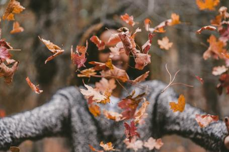 Herbstvergnügen bei der Brücke