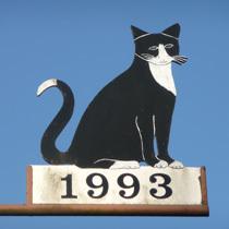 1993 Katze