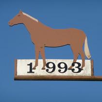 1993 Pferd