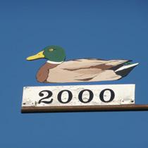 2000 Ente