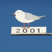 2001 Möwe