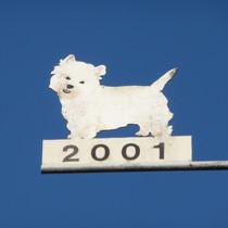 2001 Hund