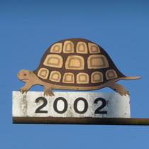 2002 Schildkröte