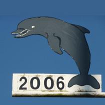 2006 Delphin