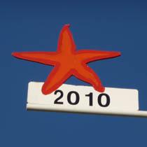 2010 Seestern